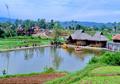 Pengertian, Tujuan, Indikator, dan Kegiatan Pokok Desa Siaga