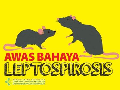 Kenali Bahaya Leptospirosis dan Pencegahannya