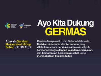 Flyer : GERMAS 2018