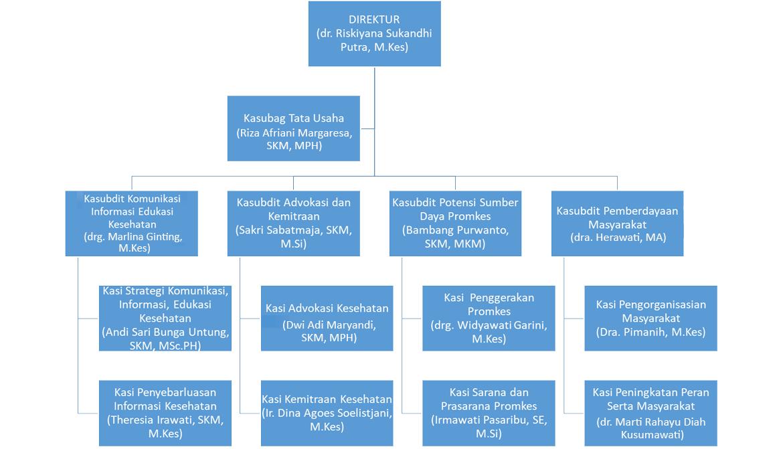 Struktur Organisasi Direktorat Promosi Kesehatan dan Pemberdayaan Masyarakat